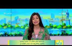 8 الصبح - الداخلية تعلن مقتل 12 عنصراً إرهابياً بأكتوبر والشروق في تبادل إطلاق نار