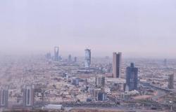 النواب المصري: القمتان العربية والخليجية بمكة فرصة لمواجهة أزمات المنطقة
