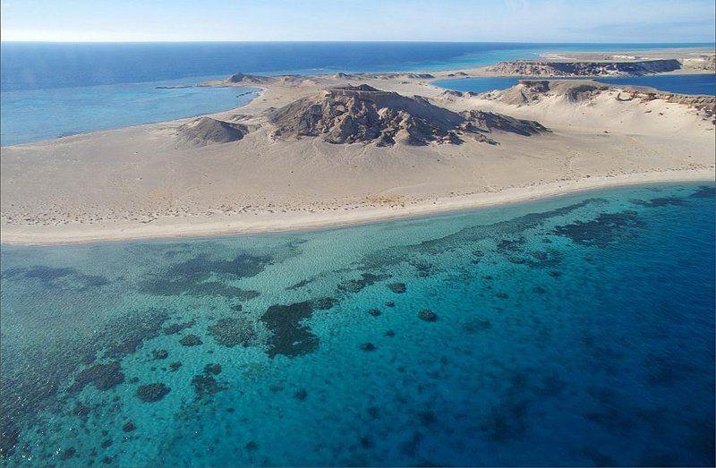 لؤلؤة في قلب طبيعة خلابة.. 144 نوعًا من الشعب المرجانية تعزز التجربة السياحية في