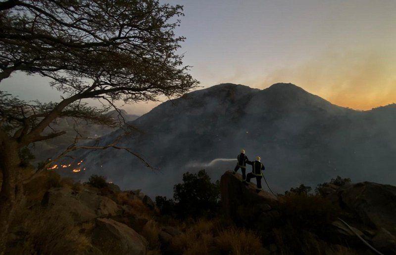 الدفاع المدني والجهات المساندة تواصل جهودها في إخماد حرائق الغابات بتنومة