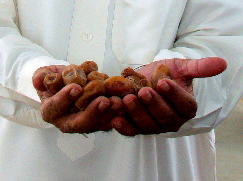 مدينة الملك عبدالله الدولية للتمور بالأحساء تبرم مجموعة من الصفقات
