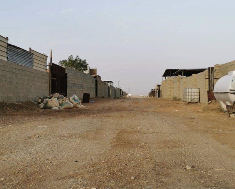 قرار إزالة سوق إبل حائر الرياض ونقله لـ