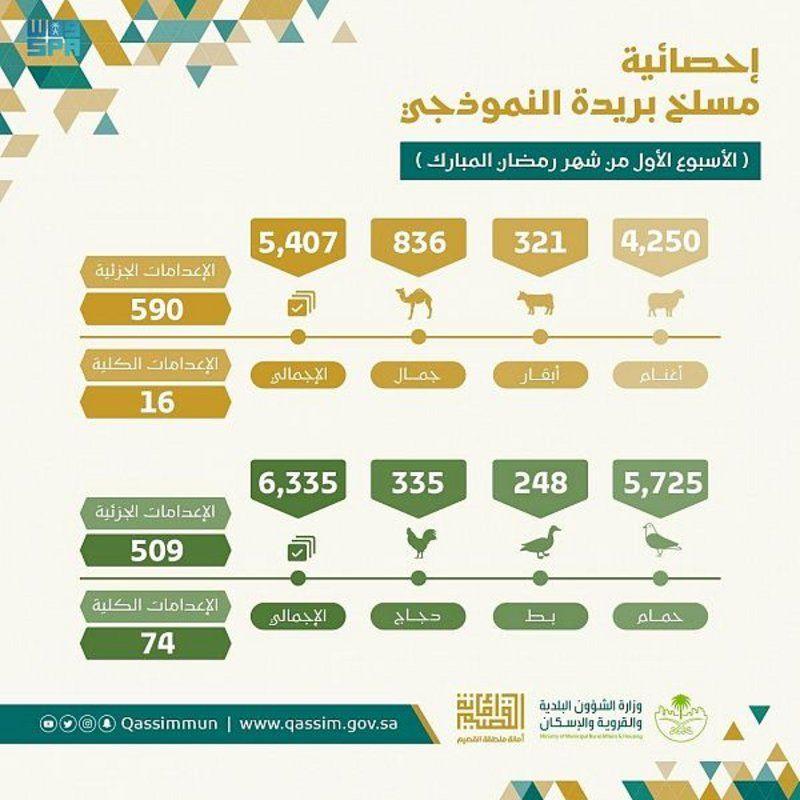 أكثر من 11 ألفاً من مذبوحات مسلخ أمانة القصيم في الأسبوع الأول من شهر رمضان