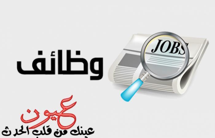 بالصور || وزارة الإنتاج الحربي تعلن عن وظائف شاغرة للمهندسين