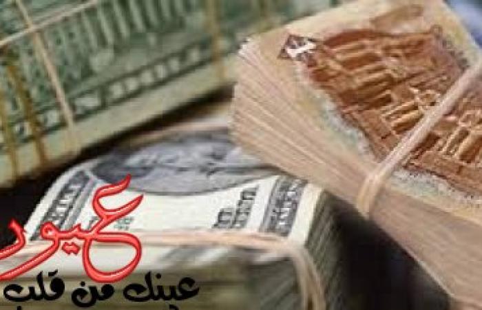 برلماني يحذر البنك المركزي من خطورة الأموال الساخنة وهبوط سعر الدولار في البنك الأهلي