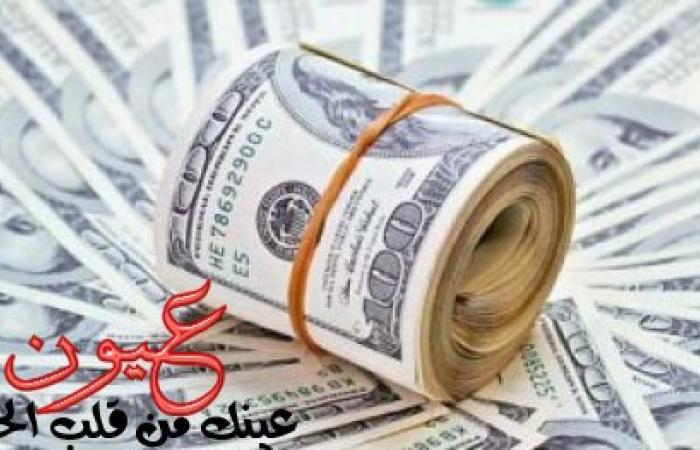 سعر الدولار يوم الثلاثاء 31-7-2018 وتباين طفيف للعملة الأمريكية بين البنوك