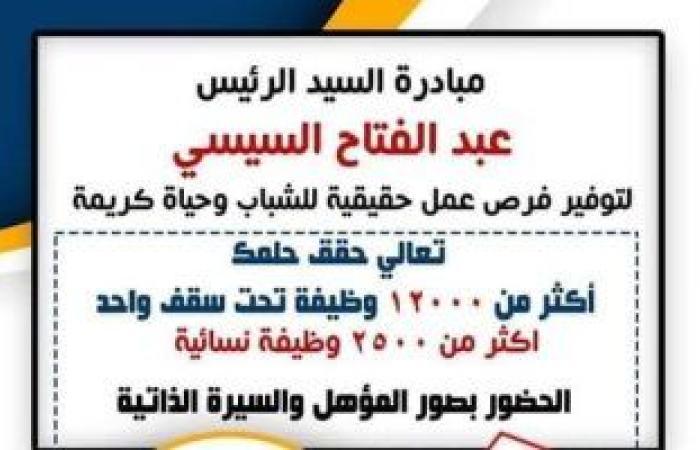 """""""تعالى حقق حلمك"""".. مبادرة رئاسية لتوفير 15 ألف فرصة عمل لشباب المنيا"""