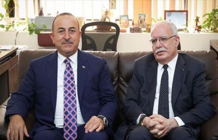 تشاووش أوغلو : سنواصل تعزيز تعاوننا مع الأردن