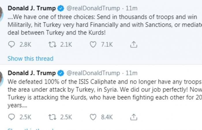 ترامب: لدينا 3 خيارات بعد هجوم تركيا في سوريا