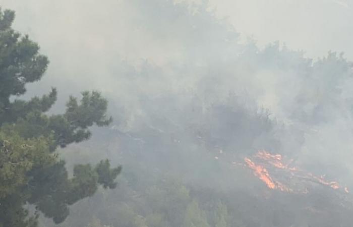 مع استمرار الحرائق... الجيش اللبناني يحذر من استعمال الطائرات المسيرة