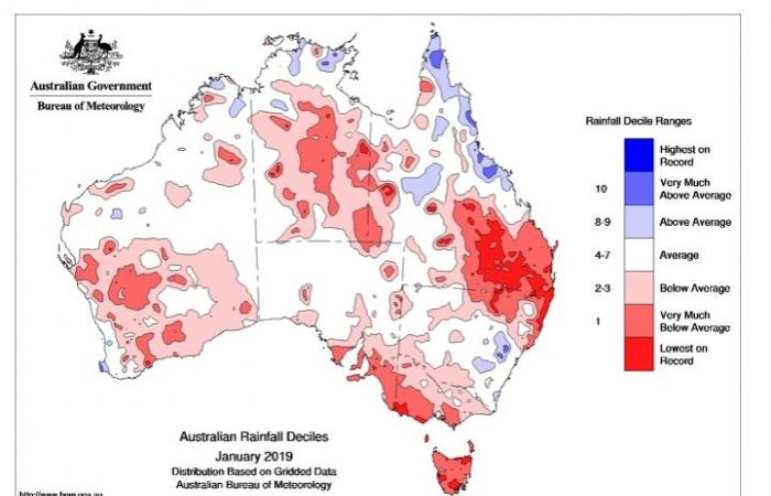 حرائق الغابات في أستراليا: 5 حقائق عن الكارثة