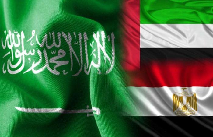 صحيفة: السعودية والإمارات ومصر تجمعها مسؤولية كبيرة تجاه المنطقة