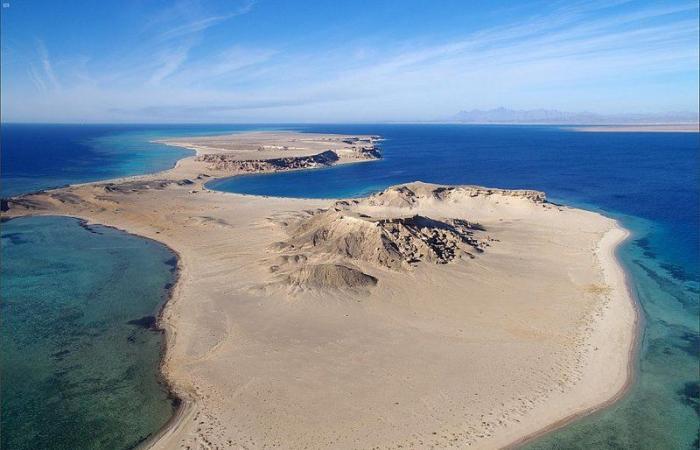 """لؤلؤة في قلب طبيعة خلابة.. 144 نوعًا من الشعب المرجانية تعزز التجربة السياحية في """"أمالا"""""""