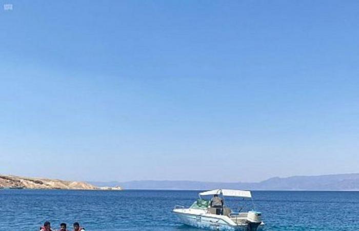 """على شاطئ الوصل.. انطلاق فعاليات مهرجان """"صيف حقل أحلى"""" للرياضات البحرية"""