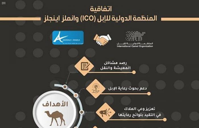 المنظمة الدولية للإبل توقع اتفاقية تعاون لحماية الإبل أثناء النقل