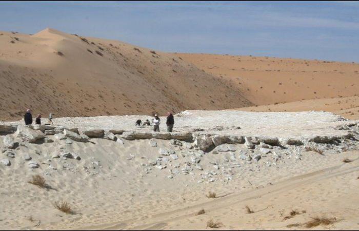 """""""الشارخ"""": آثار طبعات الأقدام تؤكد وجود جماعات بشرية قديمة في المملكة"""