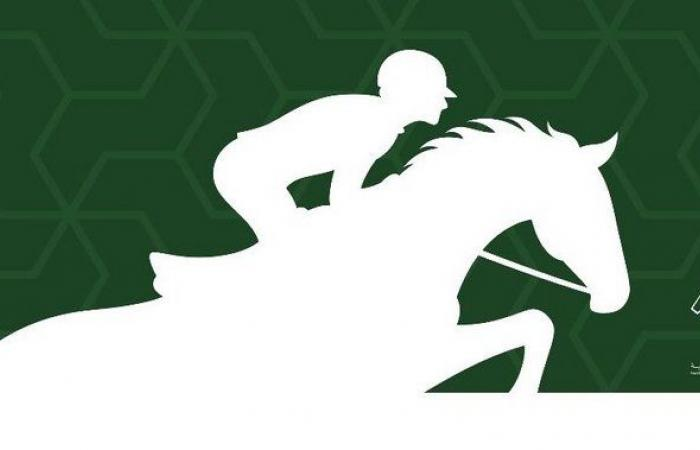 بمشاركة 80 فارساً وفارسة.. انطلاق منافسات بطولة قفز الحواجز الثالثة في جازان غداً