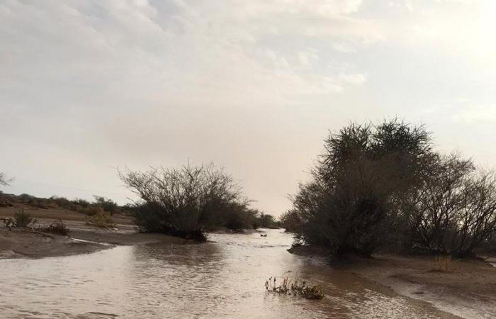 """أمطار """"سقيا"""" تهل على مواقع مختلفة من """"عفيف والمهد وضرية"""""""