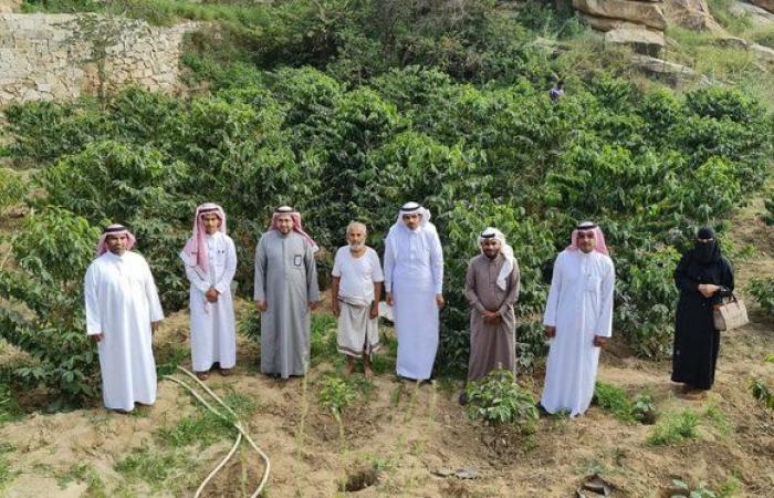 """""""واصلي"""" يتفقد مزارع البن بـ""""العارضة"""" ويستمع لمطالب واحتياجات المزارعين"""