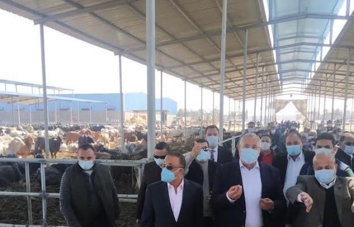 وزير الزراعة يصل النوبارية لافتتاح مزارع الإنتاج الحيواني