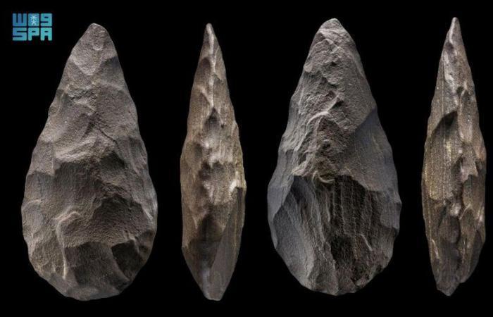 """""""التراث"""" وماكس بلانك الألماني يكشفان عن مواقع أثرية تعود إلى حوالى 350 ألف سنة"""