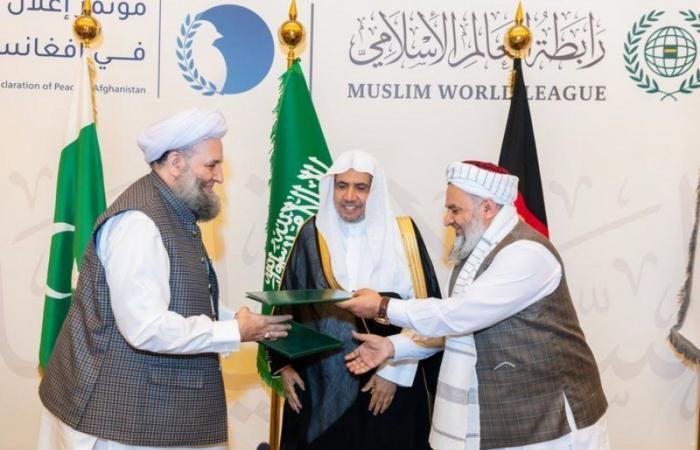 المصالحة الأفغانية برعاية سعودية فتحت آفاق التقدم.. تعرف على ما تمتلكه أفغانستان من ثروات وتنوع