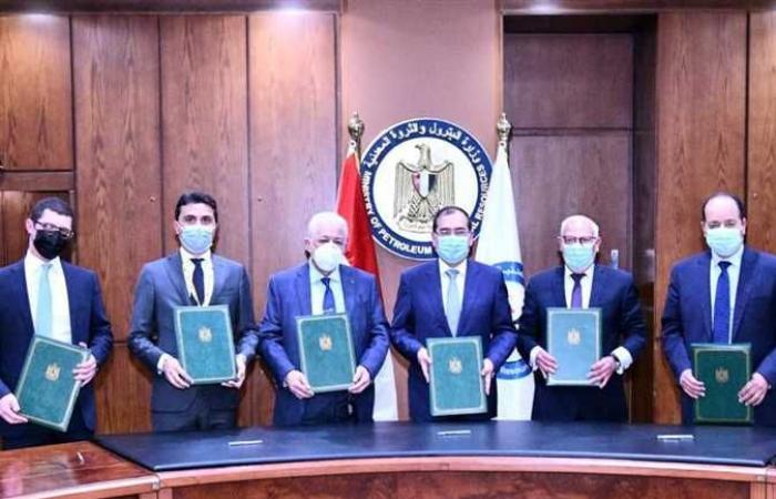 «التعليم» و«البترول» يوقعان اتفاقية لتنفيذ مشروعات تعليم فني في بورسعيد