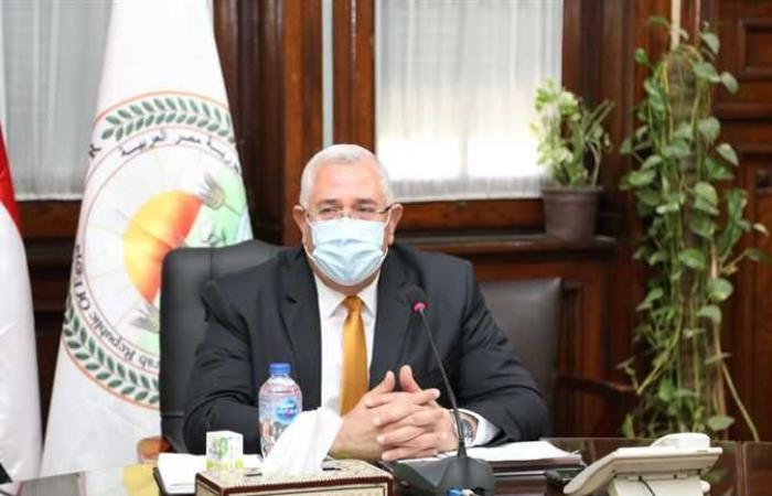 القصير : مصر بدأت «الرقمنة» بإصدار كارت الفلاح والمنصة الزراعية والذكاء الاصطناعي