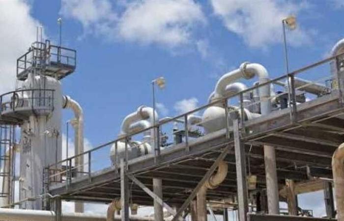 تنسيق مدارس البترول بعد الإعدادية 2021.. تعرف على المصاريف والشروط والأوراق المطلوبة