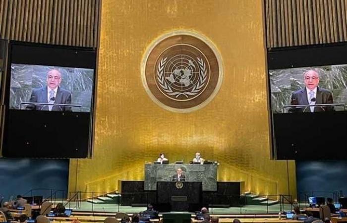 إشادة دولية واسعة برئاسة مصر للجنة بناء السلام بالأمم المتحدة