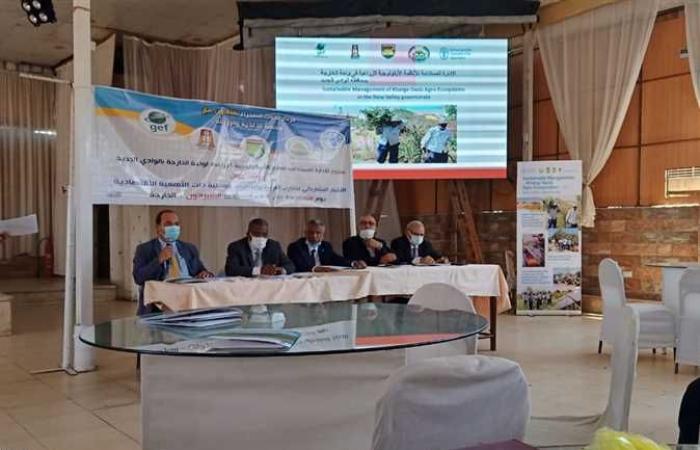 «بحوث الصحراء»: ورشة عمل عن الأهمية الاقتصادية للنباتات البرية في الوادي الجديد بالتعاون مع «الفاو»
