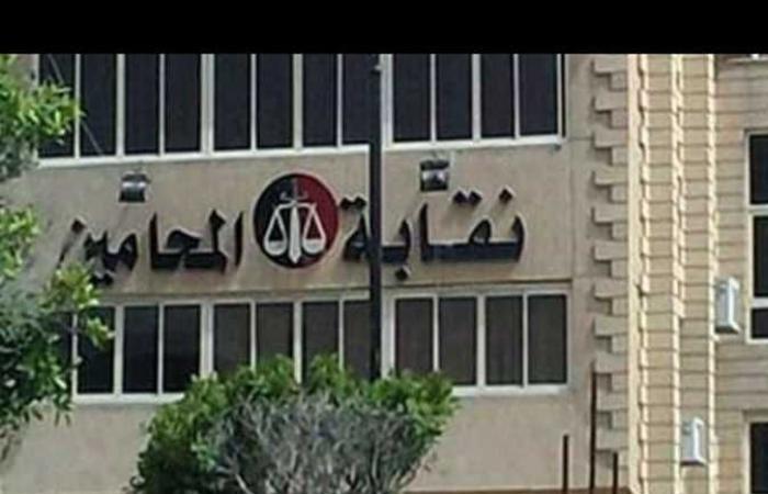 «محامين بورسعيد»: بدء تلقى أوراق الأعضاء الراغبين في الخروج على المعاش