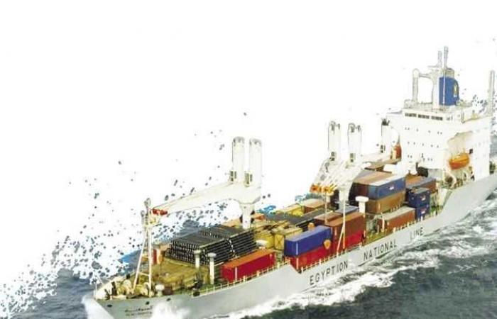 بعد العثور على خنافس .. طرد سفينة شحن من المياه الأمريكية