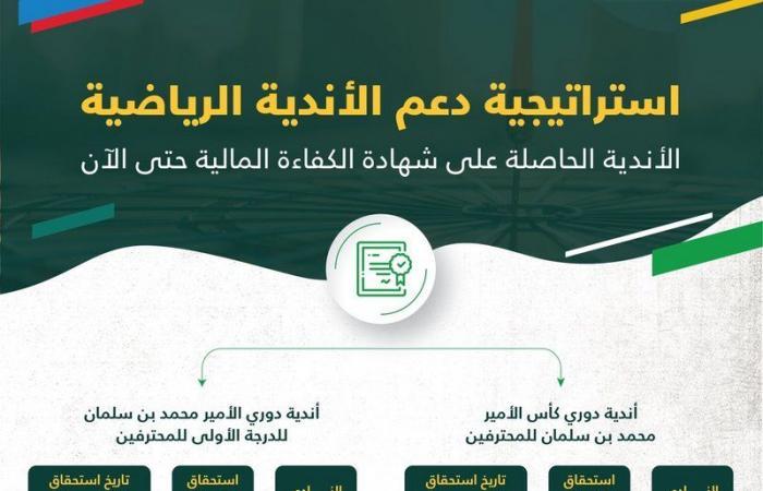 وزارة الرياضة : 6 أندية من دوري المحترفين تحصل على الكفاءة المالية