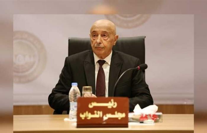 رئيس البرلمان الليبي يتهم الحكومة بالمناورة للبقاء في السلطة