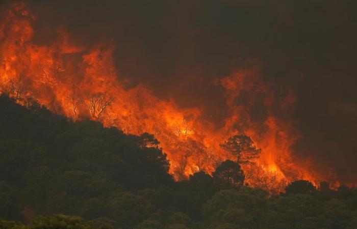 إجلاء 900 شخص جنوبي إسبانيا بسبب حرائق الغابات