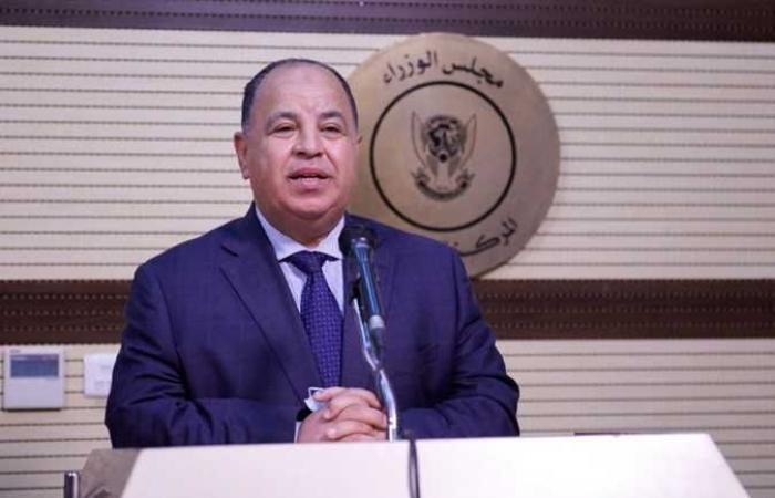 وزير المالية : عودة المستثمرين الأجانب إلى السوق المحلى