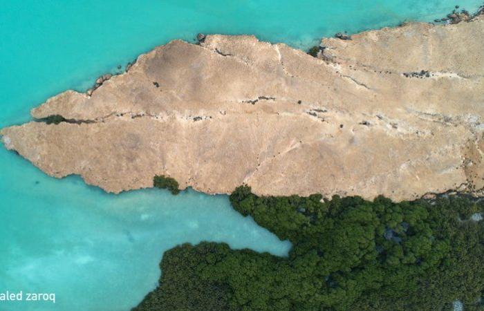 """سجلت كمحمية طبيعية في اليونسكو.. شاهد سحر """"المالديف السعودية"""" وشواطئها الفيروزية"""