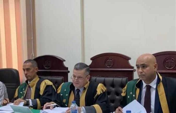 السجن 10 سنوات لصاحب مكتب استصلاح أراضٍ للنصب على مواطنين وتزوير محررات رسمية