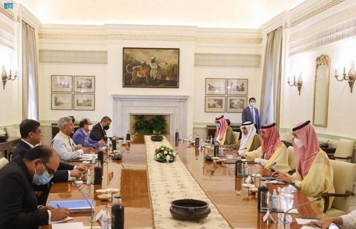 نيودلهي.. وزير الخارجية يعقد جلسة مباحثات رسمية مع نظيره الهندي