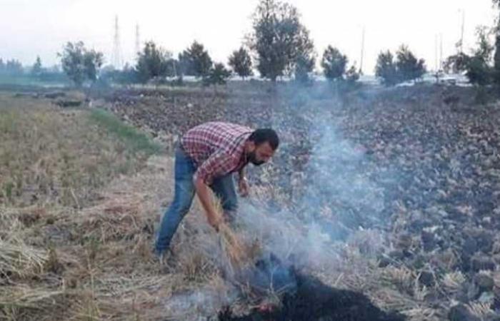 فتح 20 موقعا لتجميع قش الأرز وتحرير 8 محاضر للمخالفين بالشرقية