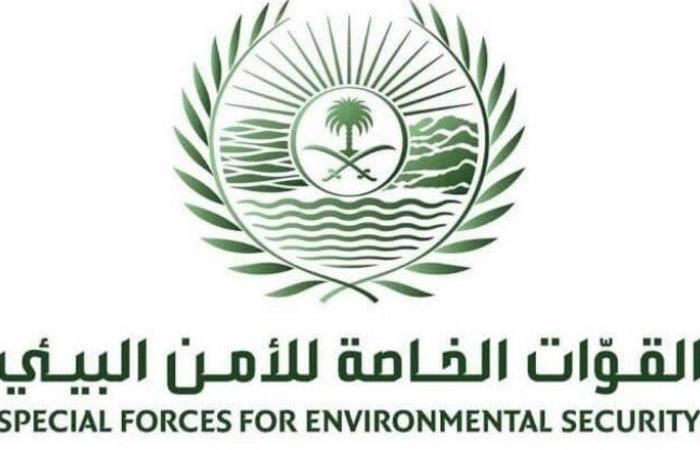 """""""الأمن البيئي"""" يضبط 5 مخالفين ينقلون الرمال ويجرفون التربة"""