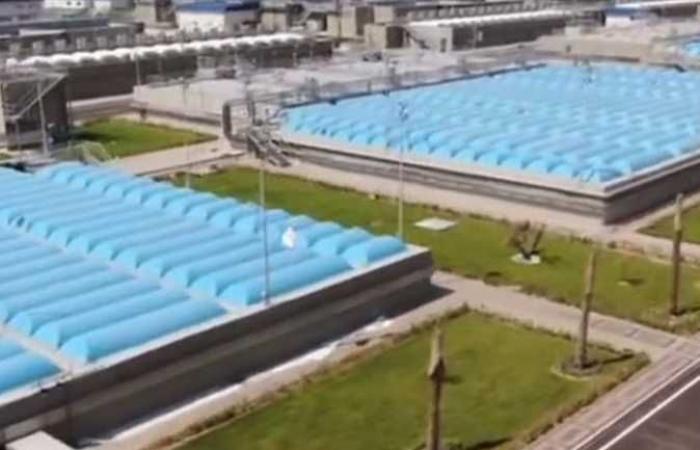 نادر نور الدين: محطة بحر البقر تحافظ على الثروة السمكية بالمنزلة وتحمي الأراضي الزراعية