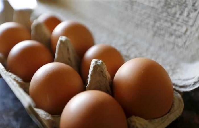 مستمر في الارتفاع.. أسعار البيض اليوم الخميس 14 أكتوبر 2021
