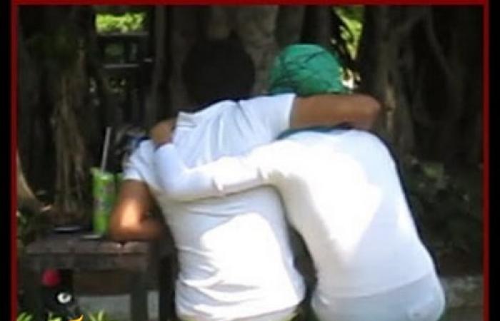 فيديو للكبار فقط ... قبلات وأحضان الطلبة بالحدائق العامة فى عز النهار