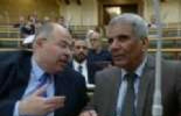 انقسام بـ«الشورى» حول ملاحظات «الدستورية» على قانونى الانتخابات