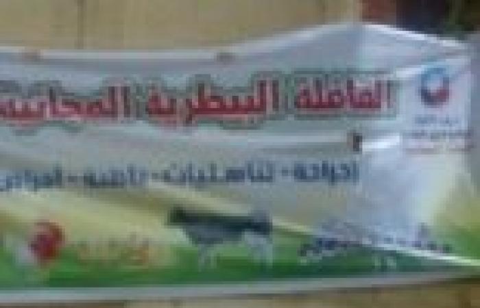 """بالصور│ """"النور"""" بكفر الشيخ ينظم قافلة بيطرية بقرى المحافظة"""