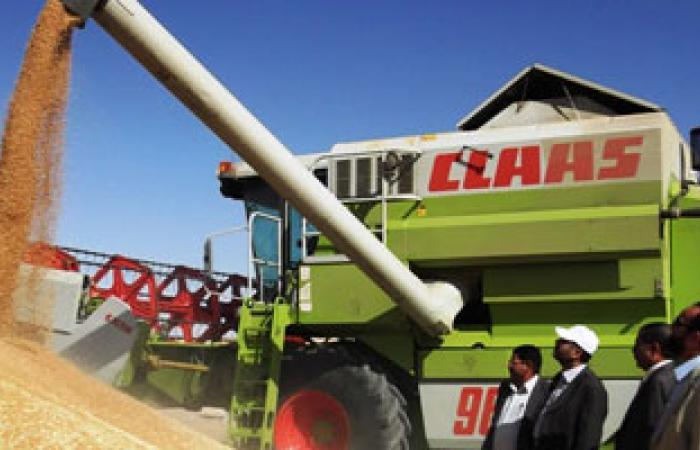 انخفاض واردات الجزائر من القمح فى الفترة من يناير إلى أبريل