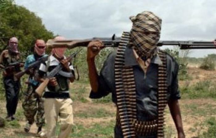 منظمة: رصد زعيم ميليشيا سودانية مطلوب للمحكمة الجنائية يقاتل فى دارفور