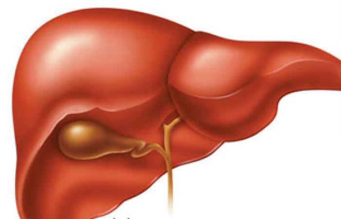 هل هناك ارتباط بين هبوط عضلة القلب وتضخم وآلام الكبد؟